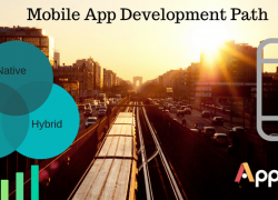 Mobile App Development Path (1)
