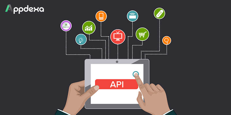 A Complete Guide to Crucial Facts About Application Programming Interfaces