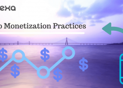 Mobile Application Monetization