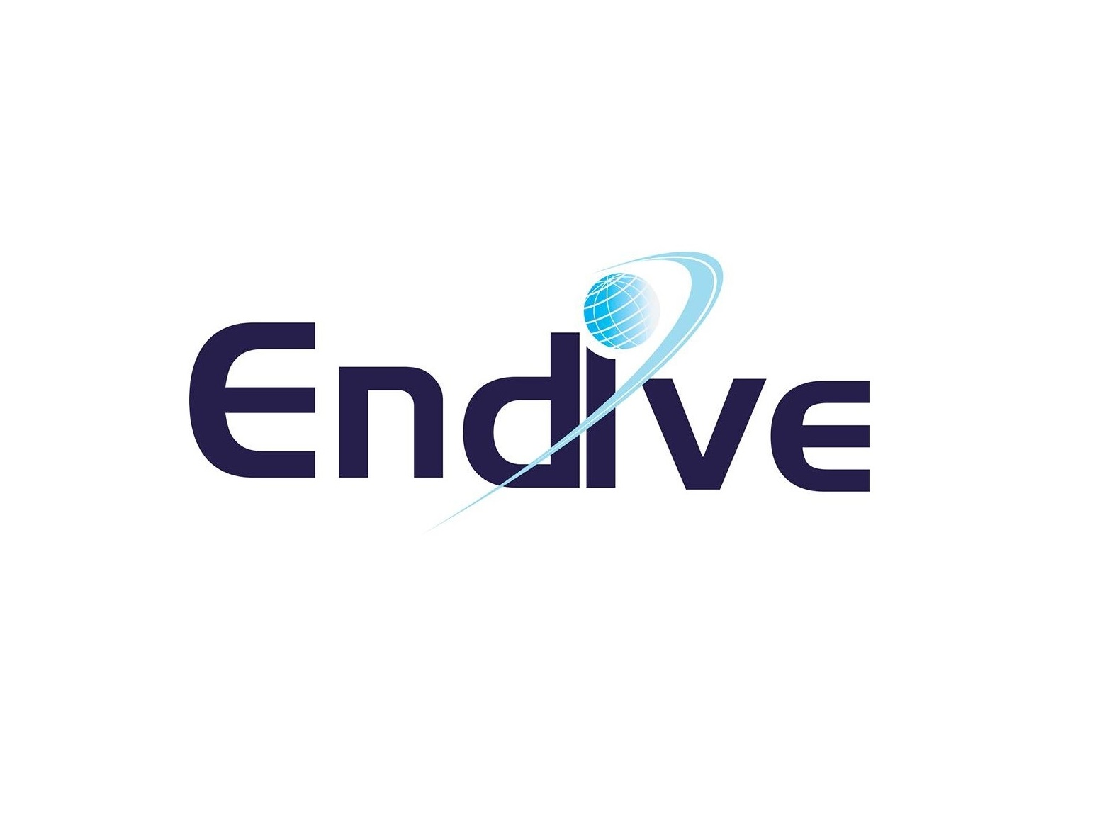 Endive Software Pvt. Ltd.